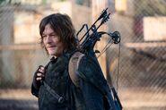 10x17 Daryl 3