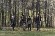 11x03 Wandering in the Woods