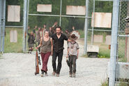 TWD The Suicide King