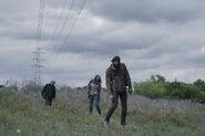 4x11 Walkers