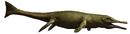 MetriorhynchusWWM