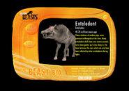 Beastbox-gallery-2