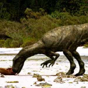 Megalosauroids
