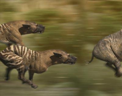 Evi hyaenodon large.jpg