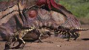 2 - Young Allosaurus