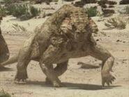 Scutosaurus new