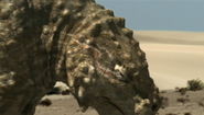Scutosaurus face