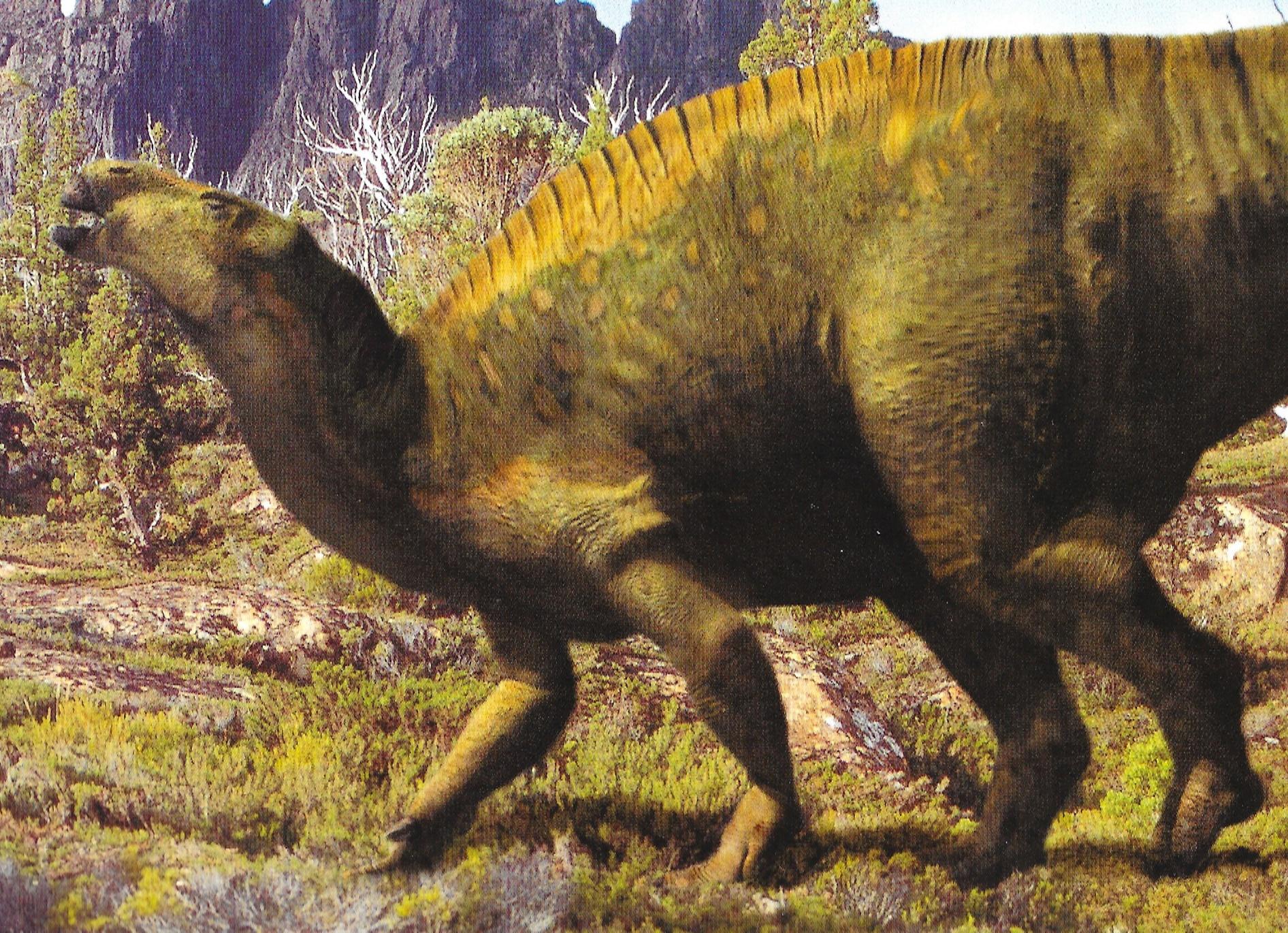 European Iguanodon