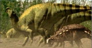 Europeon iguanadon with polocanthus