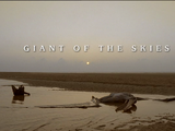 Giant of the Skies (episode)