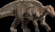 Edmontosaururs