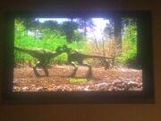 Tyrannosaurus Chicks.jpg