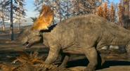 March of the Dinosaurs Pachyrhinosaurus
