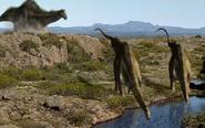 Diplodocus Neverland