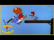 Woody Woodpecker - To Catch a Woodpecker - Full Episodes