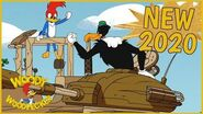 Woody Woodpecker - War of the Woods - Full Episodes