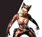 A picture from the comic of Fox in her costume.