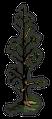 Historical-Tree-1