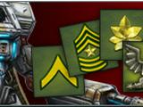 Player Level & Rank