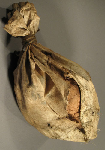 Bag of Seeds from the Pavlovsk Experimental Station