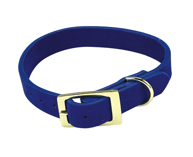 Jack London's Dog Collar