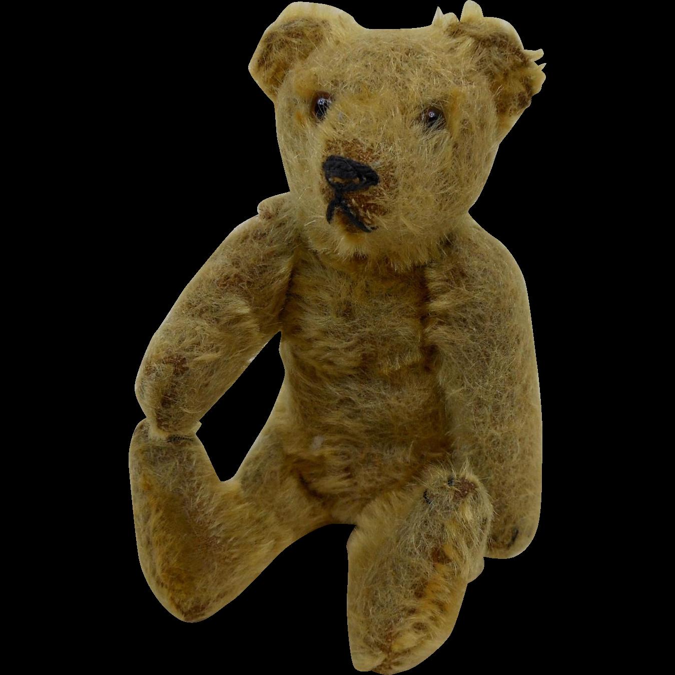 C. Henry Kempe's Teddy Bear