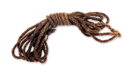 Domenico Fontana's Rope