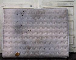 Dirty mattress.jpg