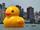 Florentijn Hofman's Unlucky Rubber Duck