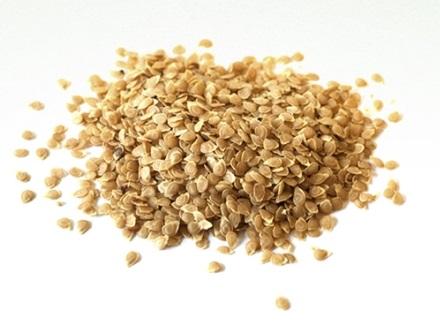 Eva Ekeblad's Potato Seeds