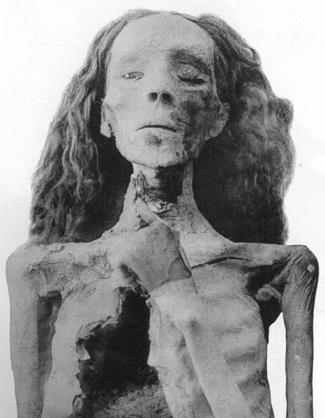 Queen Tiye's Bones