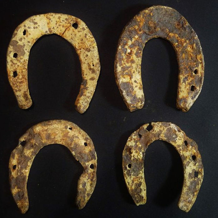Horseshoes from the Execution of François Ravaillac