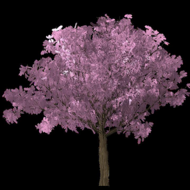 Wang Mian's Plum Tree