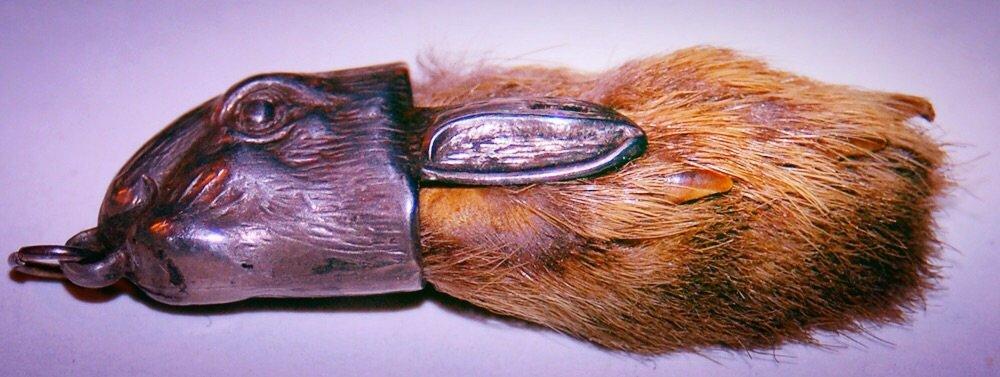 Frederick Banting's Rabbit Foot