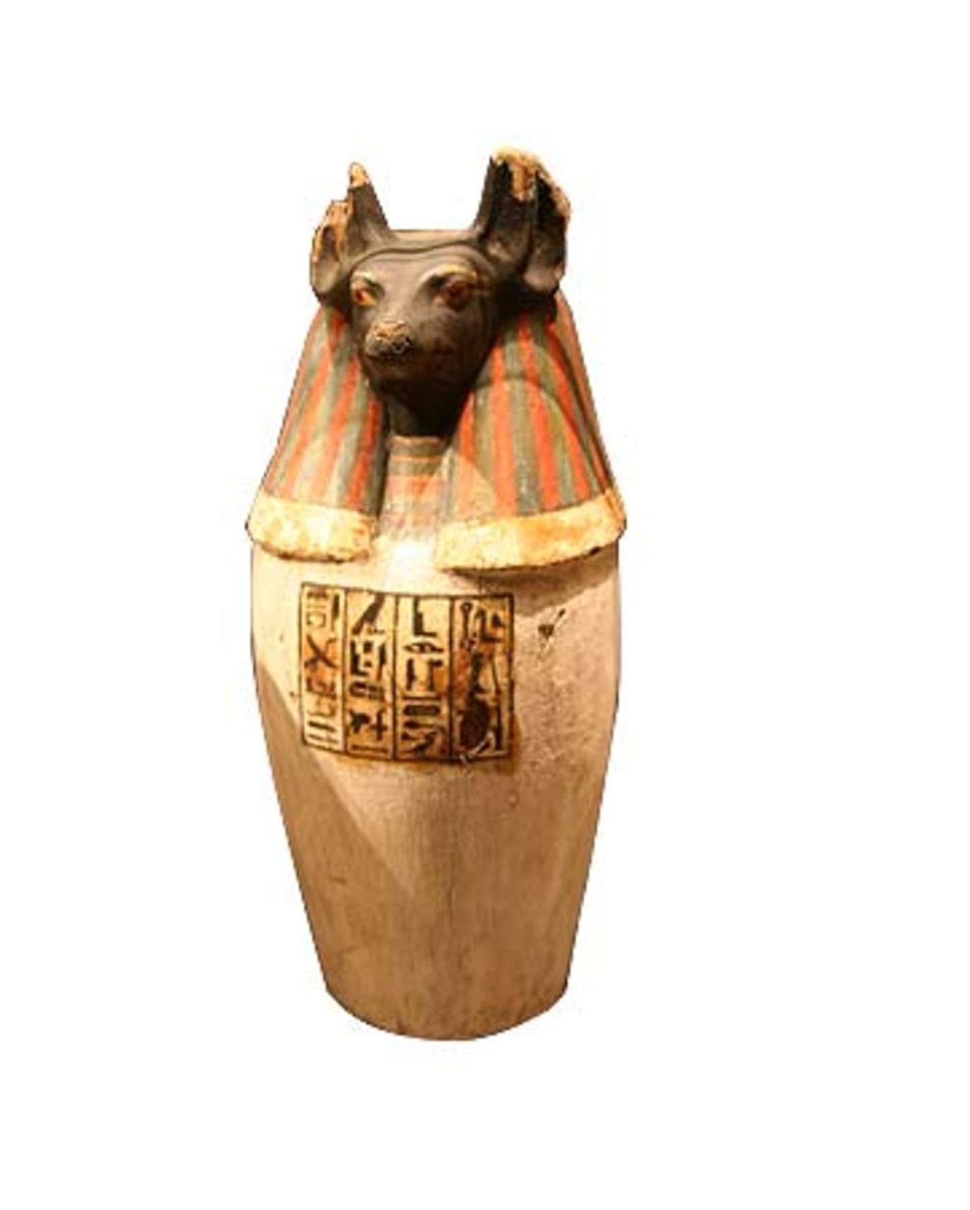 Anubis Canopic Jar