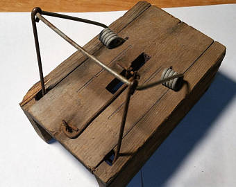 James Henry Atkinson's Mouse Trap