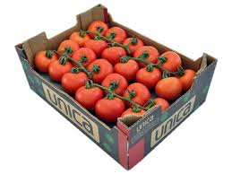 Box of Tomatoes from La Tomatina
