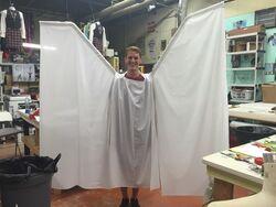 Orlando-Angel-Wings.jpg