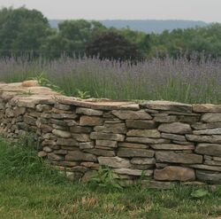 Stone wall with grass.jpg