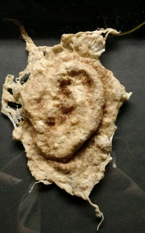 Ear of Dionysius