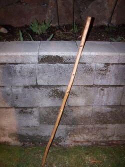 Luis Garavito's Walking Stick.jpg
