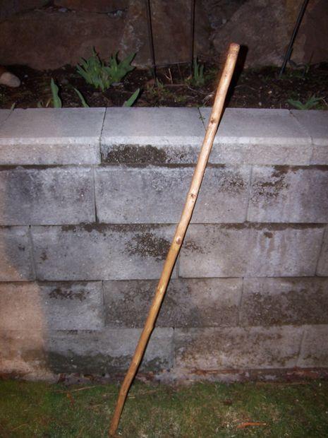 Luis Garavito's Walking Stick