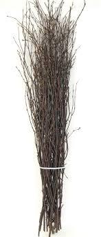 Krampus' Birch Tree Branches