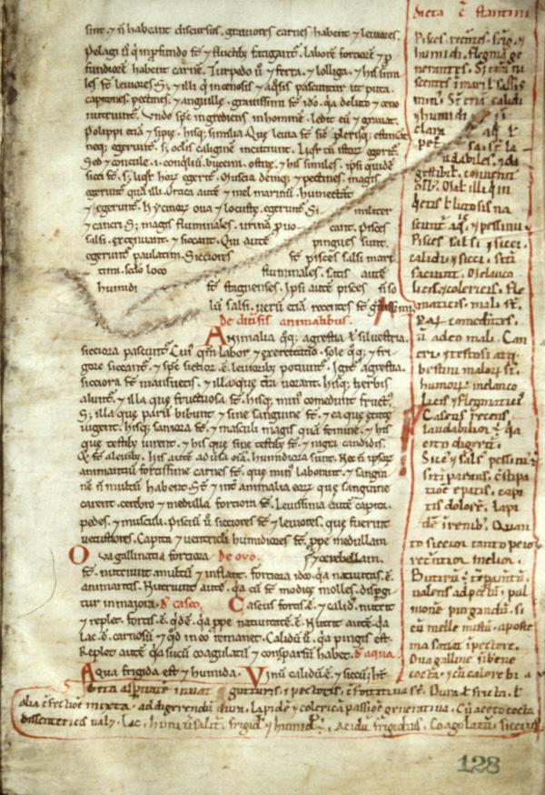 Michael Servetus' Parchment