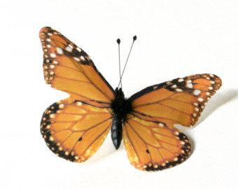 Monarch Butterfly Clip