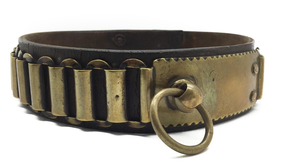 Buddy's Leash & Collar