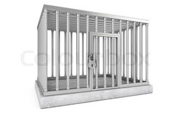 Clark Wiley's Cage.jpg