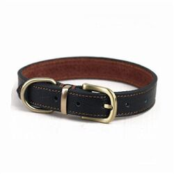 Dog collar 2.jpg