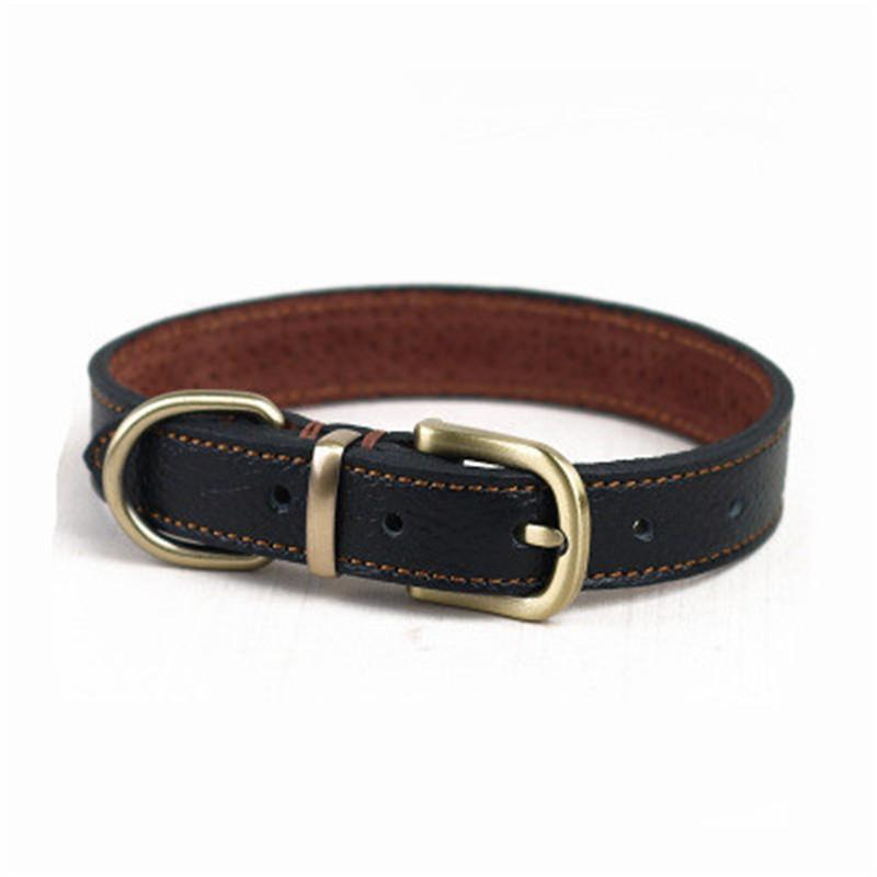 David Berkowitz' Dog Collar