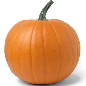 Charles M. Shulz's Pumpkin